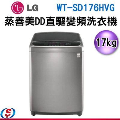 17公斤 LG 樂金 6MOTION DD 直立式變頻洗衣機 不銹鋼銀 WT-SD176HVG